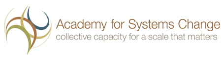 "<a href=""http://www.academyforchange.org/"" target=""_blank""> The Academy for Systemic Change</a>"